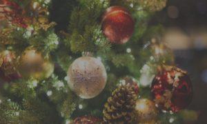 christmaslandscape