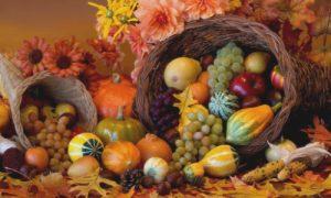thanksgivinglandscape